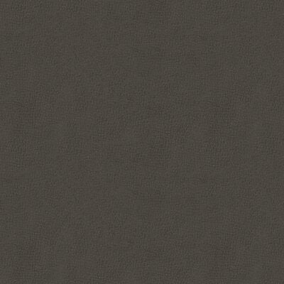 Titan Charcoal