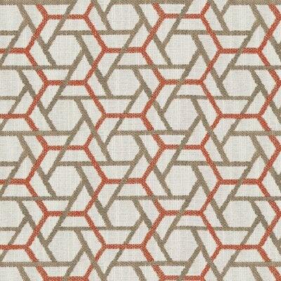 Polygon Persimmon