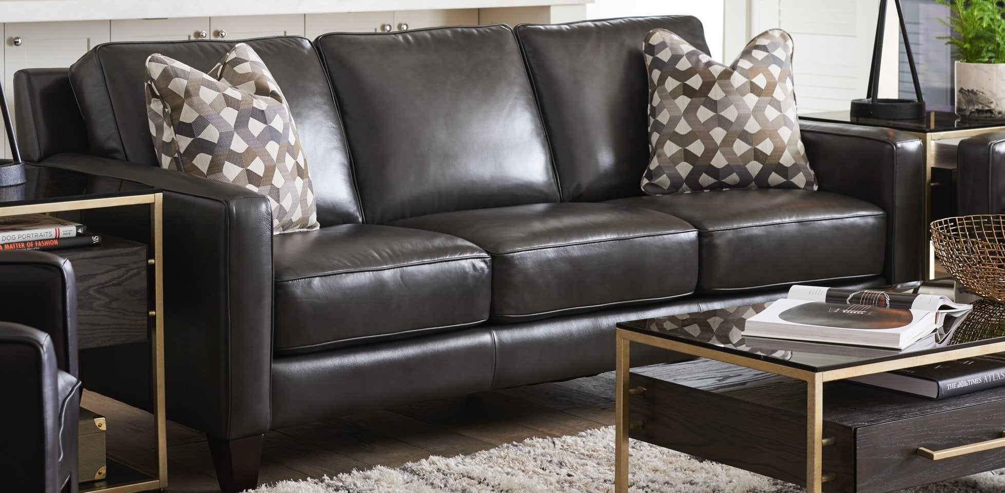 Living Room With Leather Meyer Premier Sofa