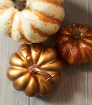 Closeup of pumpkin accent pieces on table
