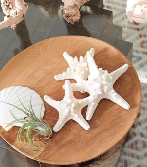 Closeup of accent table with beach-inspired decor